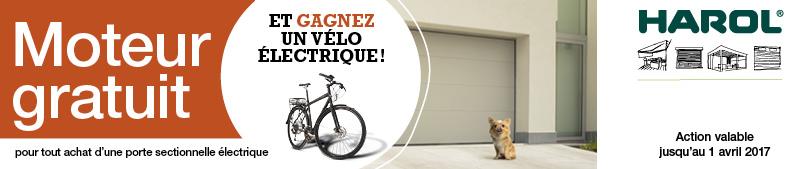 Promo Harol : le moteur est gratuit à l'achat d'une porte de garage sectionnelle motorisée - Disponible chez Renov'&Store, votre spécialiste Harol à Tournai